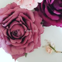 fleurs XXL4